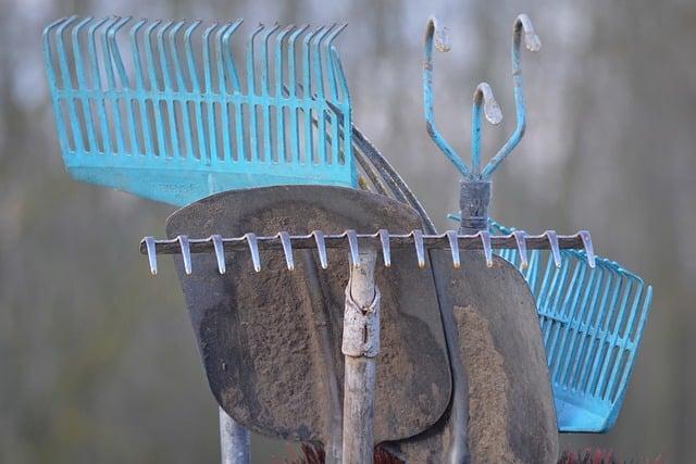 L'art de redonner une seconde vie aux vieux outils